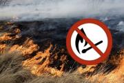 Не паліть стерню!